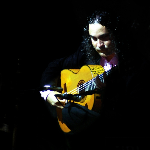 Flamenco Guitarist